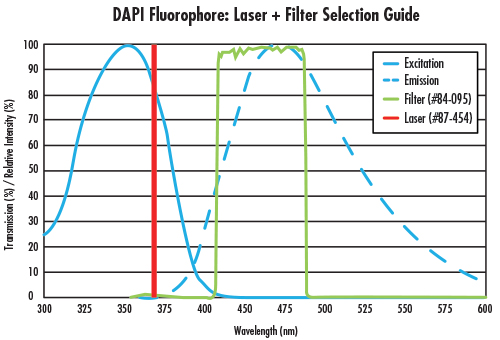fig 1 Fluorescence Imaging with Laser Illumination