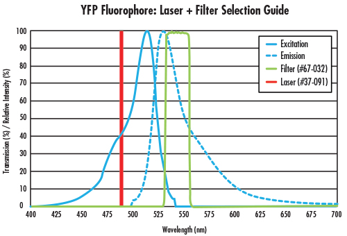 fig 3 Fluorescence Imaging with Laser Illumination